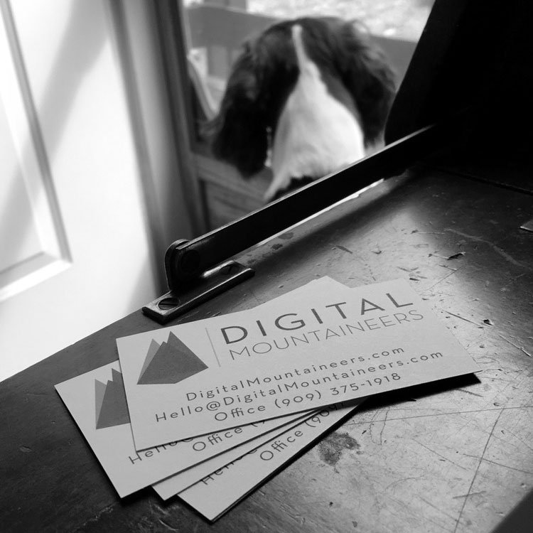 Digital Mountaineers business cards sitting on desk with dog in background