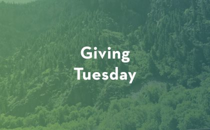 Green Image with white text Giving Tuesday